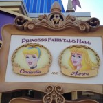 Picture tour through Princess Fairytale Hall as it has its grand opening at the Magic Kingdom