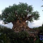 Disney's Animal Kingdom Parking Lot To Be Expanded