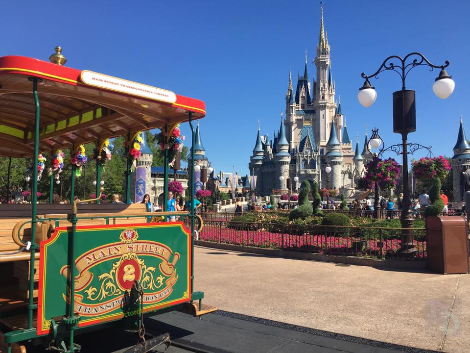 spring walt disney world jobs